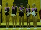 Pfalzmeisterschaften Gerätturnen 2013